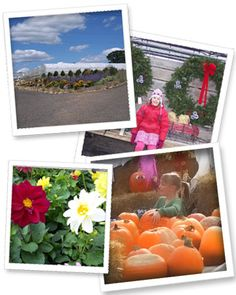 Welcome To Country Sun Farm Stillwater Mn Great Pumpkin Patch Fun For Kids Good Prices Family Fun Family Adventure Long Weekend Getaways