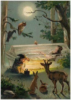 Schneewittchen (Illustrationen) – Grimm-Bilder Wiki