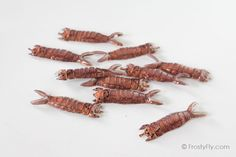 Realistic Hellgrammite Backs - FrostyFly Fly Tying Materials, Making 10, Wraps, Strong, Tie, Patterns, Simple, Easy, Products