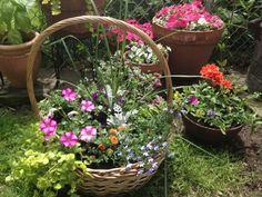 Homemade Mother's Day Flower Basket