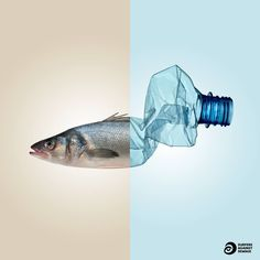 Surfers Against Sewage (SAS) is grassroots movement tackling plastic pollution and protecting the UK's coastlines for all to enjoy safely and sustainably. Ocean Pollution, Plastic Pollution, Design Poster, Graphic Design, Plastic And Environment, Art Plastic, Plastic Animals, Theme Design, Environmental Posters