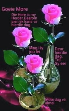 Die Here is my herder. Good Morning Kisses, Good Morning Flowers, Morning Wish, Good Morning Quotes, Afrikaanse Quotes, Goeie Nag, Goeie More, Morning Greetings Quotes, Birthday Cards For Women