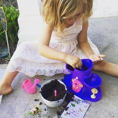 #magicalflowers #myfairygarden #matildamaymoffett 🦄👑💐🐰 My Fairy Garden, Child Love, Growing Plants, Flowers, Royal Icing Flowers, Floral, Florals, Flower, Bloemen