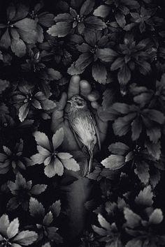 """""""Holes In The Sky"""", Martin Stranka Photography"""