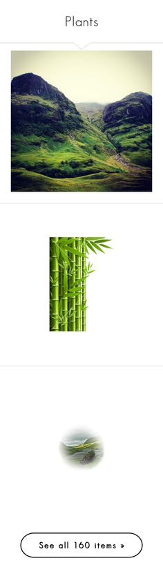 """""""Plants"""" by meabee28 ❤ liked on Polyvore featuring backgrounds, nature, photos, circus, circo, props, carnival, effect, green and landscape"""