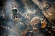 Hunting for wild honey bee is one of the oldest and rarest professions in Nepal. Hunters are hanging at a height of hundred meters and collecting wild honey from the huge bee nests attached to the rocks