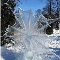 Funny pictures about Frozen Spider Web. Oh, and cool pics about Frozen Spider Web. Also, Frozen Spider Web photos. All Nature, Science And Nature, Amazing Nature, Nature Pics, Snow Scenes, Winter Scenes, Cool Pictures, Cool Photos, Random Pictures
