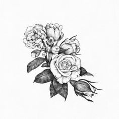 drawing Illustration art design tattoo flowers buds floral roses tattoo design…