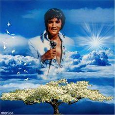 Elvis Presley Born, Elvis Presley Posters, Elvis Presley Memories, Elvis Presley Pictures, Elvis Presley Wallpaper, Elvis Birthday, Burning Love, American Legend, Lisa Marie Presley