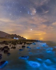 How insane is bioluminescence? Glowing plankton captured by World Photography, Canon Photography, Digital Photography, Amazing Photography, Travel Photography, Photography Training, Nature Sauvage, Destinations, Viajes