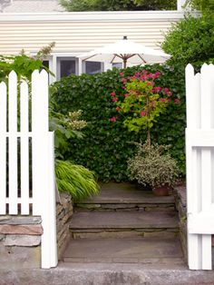 Covered with English ivy, a frill-free chain-link fence from the home-improvement store acts as a natural privacy barrier. It starts at the front gate and snakes backward, shielding the patio from view.    Read more: Ivy on a Fence - Small Garden Ideas - Good Housekeeping