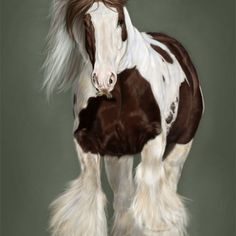 Gypsy vanner cob draft horse stallion counted cross stitch pattern
