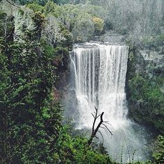 "Felipe Andrés Ibáñez Lagos on Instagram: ""En algún lugar del mundo 🌳🌾🌎"" Waterfall, Instagram, Outdoor, Lakes, Outdoors, Outdoor Living, Garden, Waterfalls"