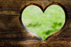 In three words I can sum up everything I've learned about life: it goes on. I Love Heart, With All My Heart, Heart Pics, Heart In Nature, It Goes On, Jolie Photo, Love Symbols, Wooden Hearts, All You Need Is Love