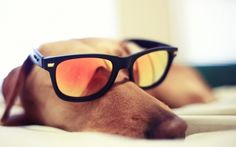 4 de octubre de 2013   ¡¡¡Ya es viernes!!!  Saca tus mejores gafas porque la semana ya termina.  Desde Securmax te deseamos que disfrutes y que descanses de un espléndido fin de semana.   Compártelo y alegra el viernes a quien quieras...