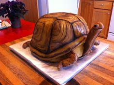 Box Turtle cake 2013