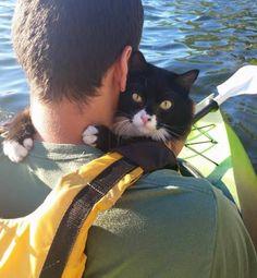 Boots loves kayaking. #Imgur