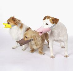 Quack focinheira feitas em silicone macio e tamanhos específicos para diversas raças