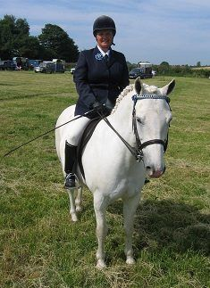 Unfortunately the website for Rehome My Horse has had to close My Horse, Horses, Wanted Ads, Cob, Animals, Animales, Animaux, Animal, Animais