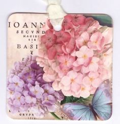 Hydrangea Gift Tags  Butterfly  Summer  Pink and by Bluebirdlane, $6.00