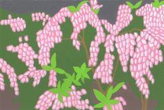 季節の花。馬酔木。2018/3/27