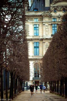 Louvre Palace, Paris I