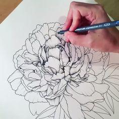 Pencil Drawings Of Flowers, Pencil Art Drawings, Art Drawings Sketches, Colorful Drawings, Peony Drawing, Floral Drawing, Flower Drawing Tutorials, Art Tutorials, Up Book