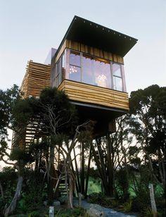 dream, the view, tree houses, treehous, trees, hapuku lodg, lodges, new zealand, modern homes