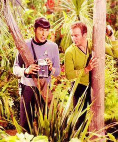 "Leonard Nimoy ""Spock"" - William Shatner ""Kirk"" Trek Original Series // I really like this photo! Very pretty:) Star Trek 1966, Star Trek Tv, Star Wars, Star Trek Original Series, Star Trek Series, Science Fiction, Spock And Kirk, Star Trek Images, Leonard Nimoy"