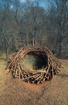 Clay Nest by Nils-Udo at Clemson University