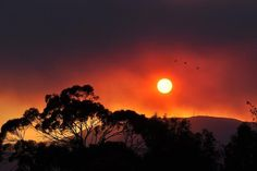 Beauty amidst the carnage - Sky over Mt Wellington while bush fires rage in Tasmania. January 2013