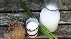 Il latte di cocco in cucina: usi dolci e salati