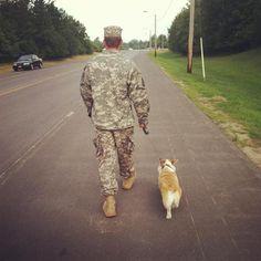 Army #corgi