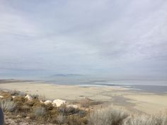 Looking Out to the Great Salt Lake, Antelope Island State Park Utah