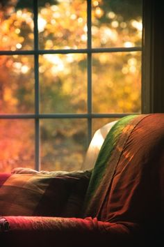 Sunlight reflects the Autumn through the Window. Autumn Day, Autumn Home, Autumn Leaves, Fall Winter, Soft Autumn, Winter Season, Window View, Through The Window, Nooks