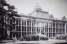 Palmenhaus auf der Pfaueninsel von Karl-Friedrich Schinkel