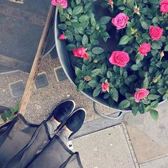Today's details...Grey tones with rose buds! ★SK #fromwhereistand #style #sneakers #flowers #LibertyLondon #London #pink #grey #blogger #ootd #September - Thanks to skarmanspassion via instagram.