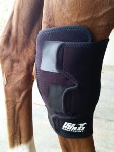 Super awesome reasons to ice your horse's legs after exercise!    http://www.proequinegrooms.com/index.php/tips/grooming/the-case-for-icing-your-horse-s-legs-after-exercise/