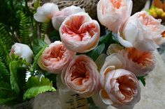 Juliette roses