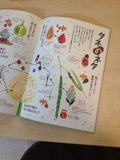 農style vol.4 挿絵