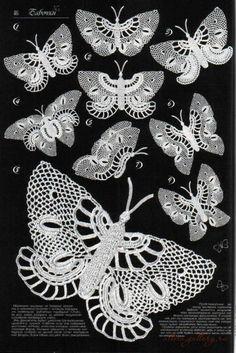 Gallery.ru / Фото #42 - Бабочки разные - Alleta