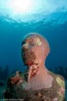 Vicissitudes, Grenada, West Indies - Take a scuba diving trip to places Jason de Caires Taylor has exhibits. Stunning!