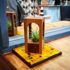 All About Plants, Flower Pots, Flowers, Wood Planters, Wood Lamps, Hanging Plants, Wood Art, Wood Crafts, Arts And Crafts