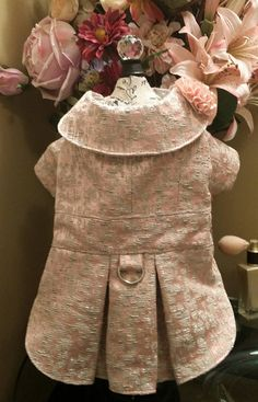 Special x matching dog dress and coat size medium