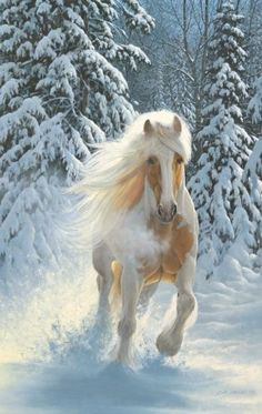 Are you looking for Horse Jigsaw Puzzles? Capture the freedom of your imagination and let your spirit run wild and free with these amazing horse jigsaw puzzles. Without a doubt horses seem to capture our imagination and they are the symbol of freedom and strength and you'll find a huge selection of Horse Jigsaw Puzzles for adults in a variety of sizes and shapes and piece count.
