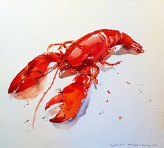 lobster watercolor - Caitlin Heimerl