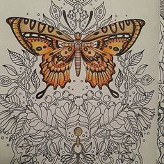 Work in progress.. #butterfly #orange #wings #colors #coloringbook #colorful…