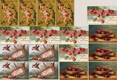 Συνταγή για λαχταριστή σπιτική μαρμελάδα κεράσι [εικόνες]   iefimerida.gr