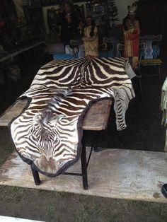 bklyn contessa :: brimfield find :: vintage zebra hide