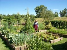 Best 24 French Potager Garden Ideas https://www.fancydecors.co/2018/02/23/24-french-potager-garden-ideas/ Potager gardens do not have to be fussy things. They are ideal for people who wish to grow heirloom vegetables.